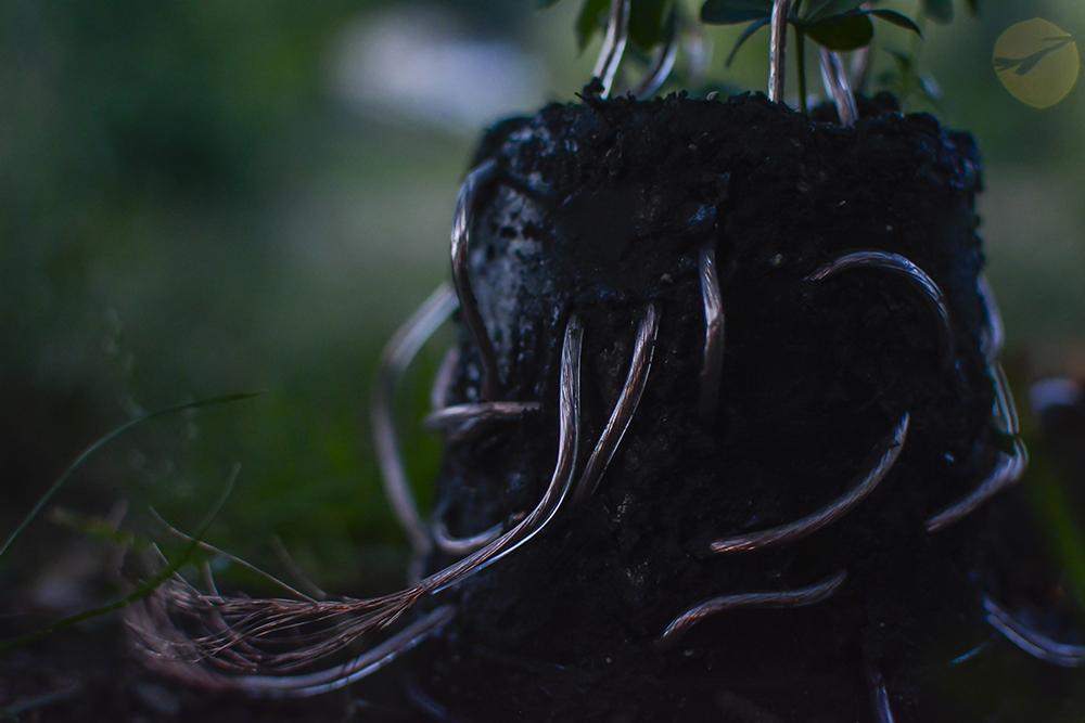 plant-lamp_julius-fuehrer_03.jpg