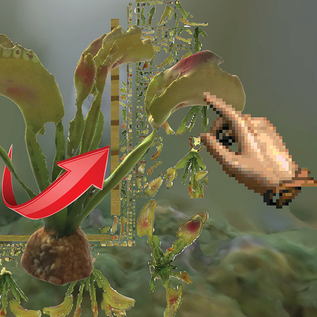 preview image of Meadow of carnivore plants